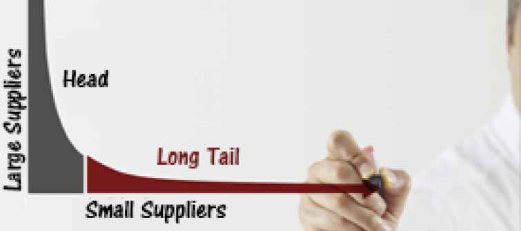 Diagram illustrating the long tail of small suppliers.