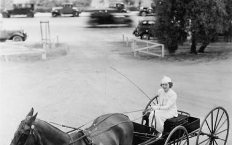 Woman driving horse and buggy.